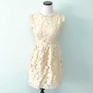 TULLE Cream Lace Dress Fit and flare
